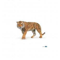 Tigre - Papo