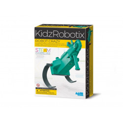 4M - Robot crazy