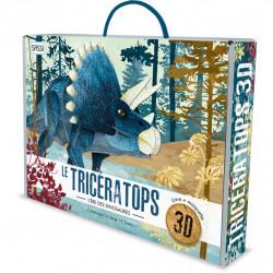 Maquette 3D - Triceratops