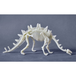 Terra kids - Stegosaure...