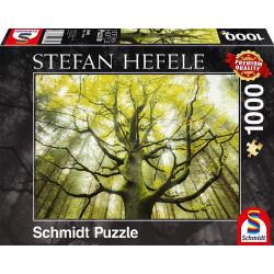 Puzzle 1000 pcs - Arbre a...