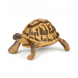 Tortue d hermann - Papo