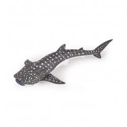 Jeune requin baleine - Papo