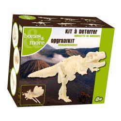 Mini squelette dinosaure